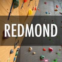 Redmond Vertical World